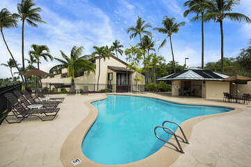 Pool with Ample Seating Surrounded by Palm Trees