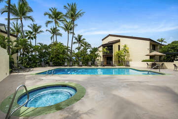 Pool and Hot Tub with Palm Trees Surrounding the Area