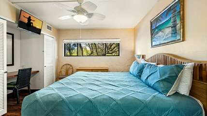 Master bedroom with flat screen TV