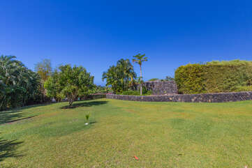 Large lot with tropical fruit trees and plenty of green grass to enjoy!