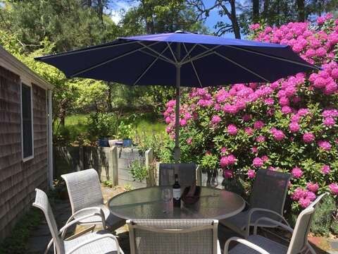 Welcome to the Rosa Rugosa Cottage! Patio with table, chairs, and gas grill  - 19 Old Cart Way Chatham Cape Cod New England Vacation Rentals