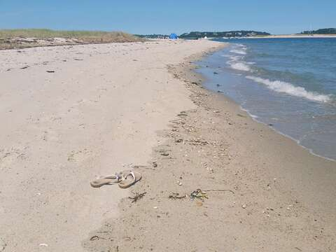 Stroll back to the public beach area by the water - Chatham Cape Cod New England Vacation Rentals