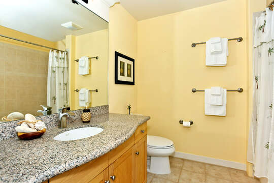 Bright and Cherry Second Bathroom