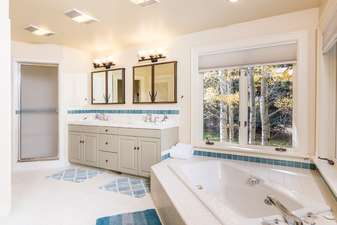 Dual sinks, extra long bathtub, a walk in steam shower, and water closet in the 1st master bathroom