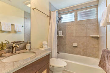 Common Area Bathroom with Tub/Shower Combo and vanity sink.
