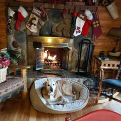 Image of Fireplace Decorated for Christmas.