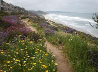 The Beautiful Del Mar Bluffs, just 1 block away!