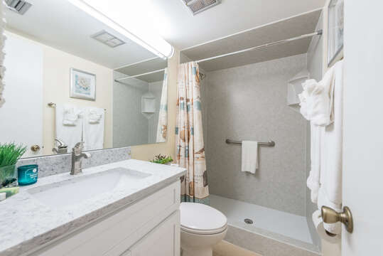 Brand new (June, 2018) guest bathroom with walk in shower, quartz counters and new vanity.