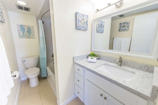 Brand new (June, 2018) master ensuite with tub/shower and quartz counter.