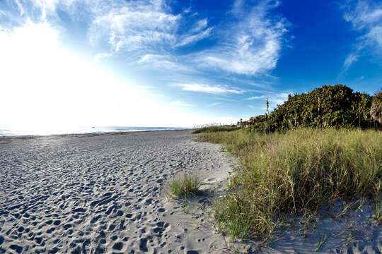 Walk right out to deep white sand beaches