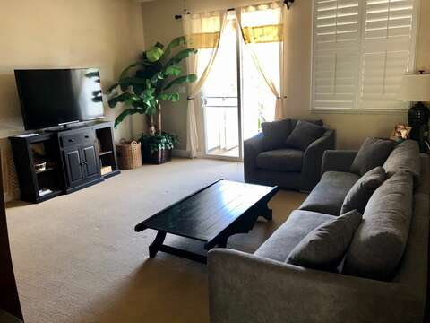 Living room with a new sofa and chair