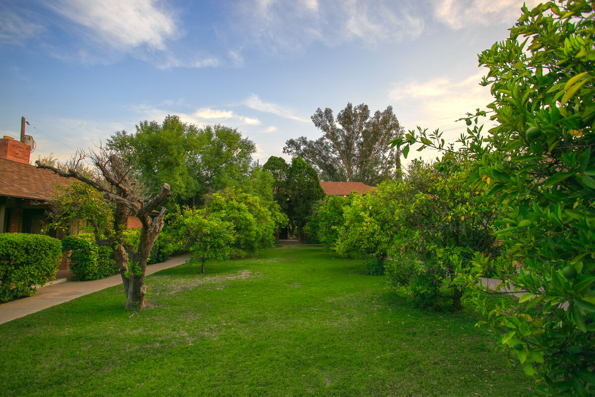 The luscious green lawns and trees found throughout the entire community make this true oasis in the desert and the city!