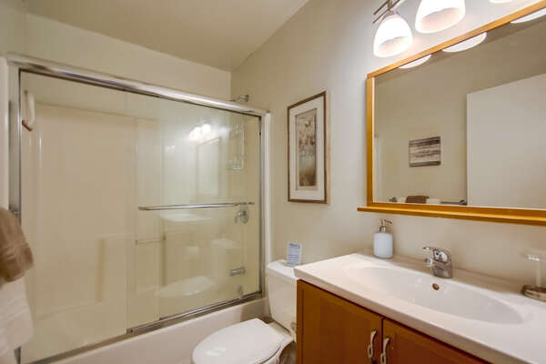 Shower-Tub Combo, Single Sink Vanity, Mirror, and Toilet.