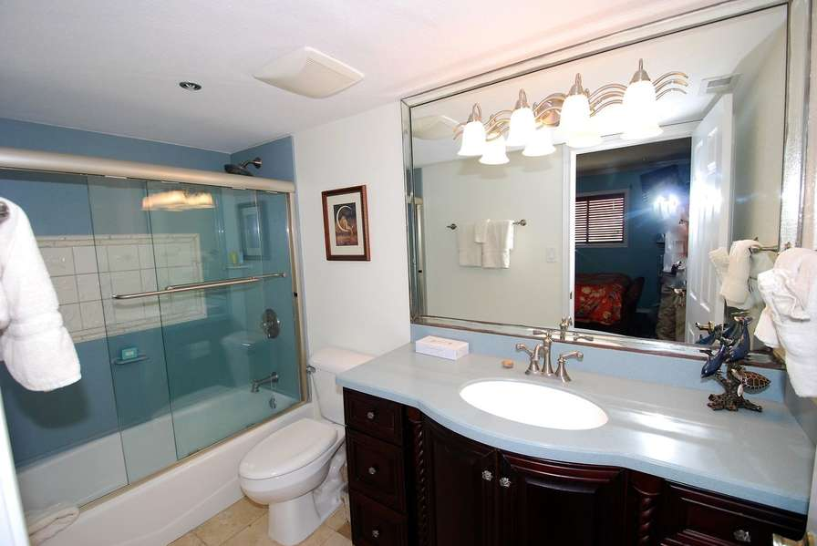 Master Bath / Shower & Tub