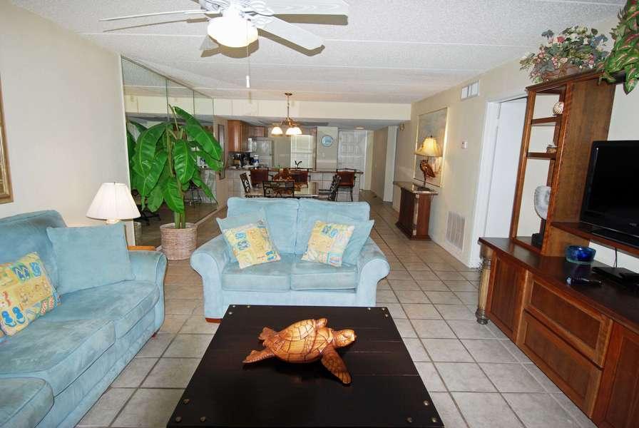 Living room: With Sofa Sleeper