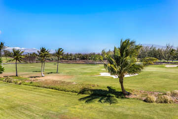 View of the Green Fairway and Palm Trees