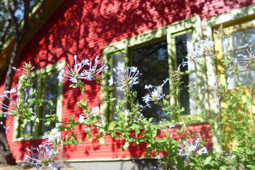 Soco Spaces: Red House. Adorable updated 1926 bungalow.