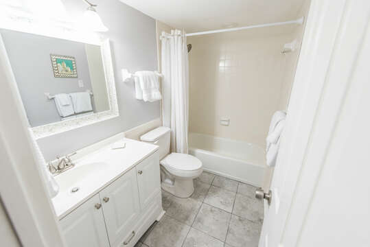Guest bathroom with tub, shower and oversized vanity
