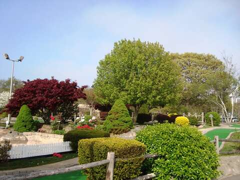 Mini golf anyone? Located right behind the Weatherdeck! - West Harwich Cape Cod - New England Vacation Rentals