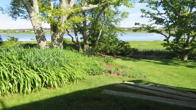 The view from the steps down to the yard in the summer! - 84 Cranberry Lane Chatham Cape Cod - New England Vacation Rentals