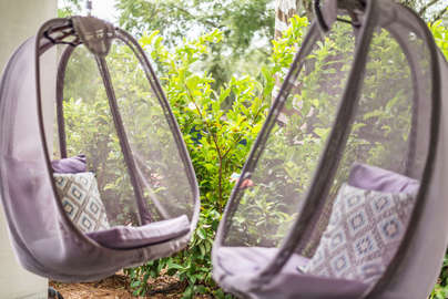 Come swing with me