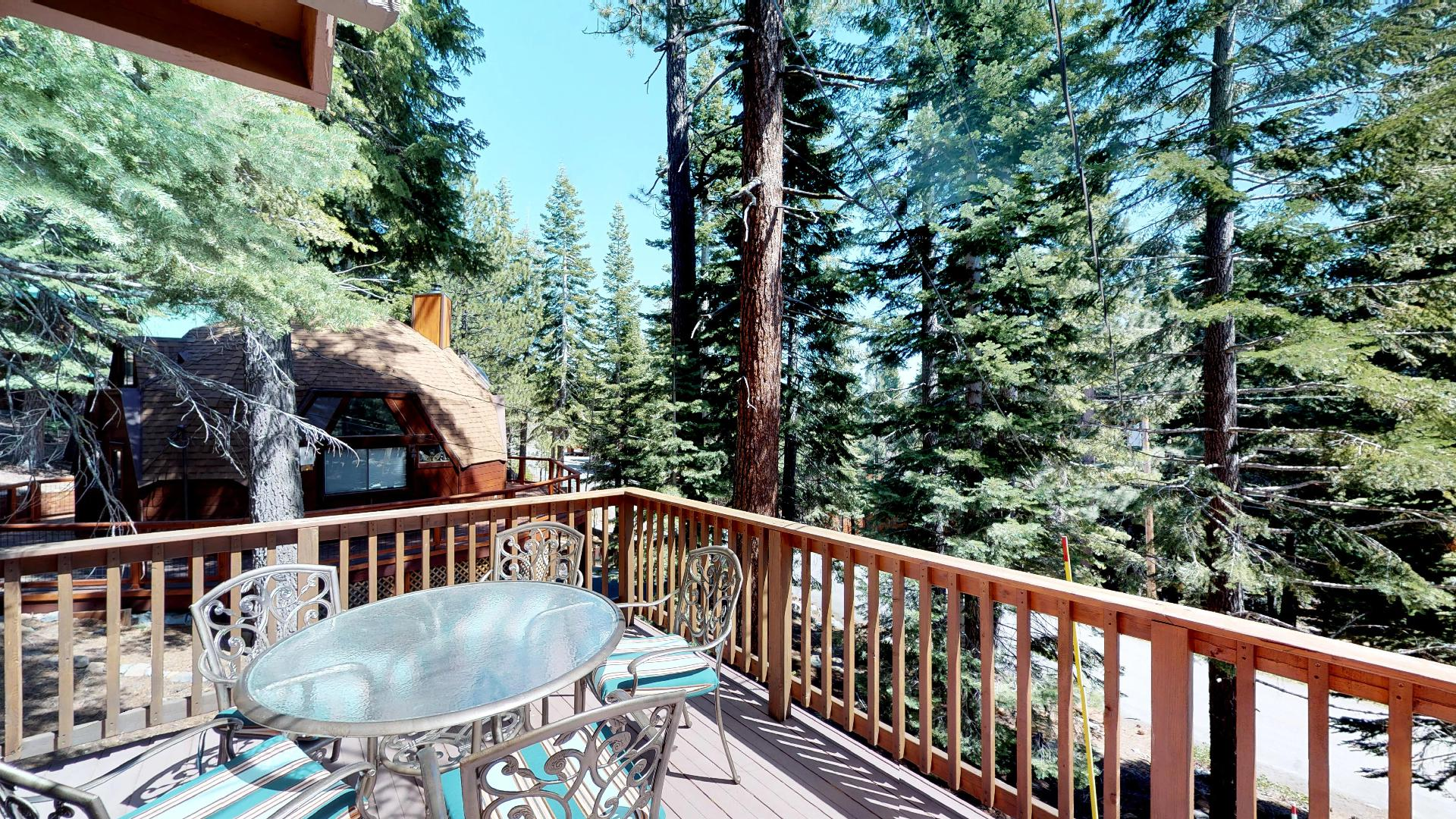 Looking into the Woods from our Truckee Cabin Rental