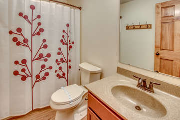 Bathroom in the Ziruma Pocono Mountain Vacation Home