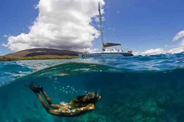Blissful adventures await, such as Sail Maui's Molokini Snorkel