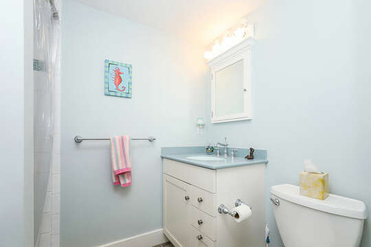 Main floor bath just off the kitchen with shower-325 Main Street Chatham Cape Cod - New England Vacation Rentals