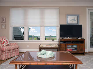 Incredible long marsh views and HDTV