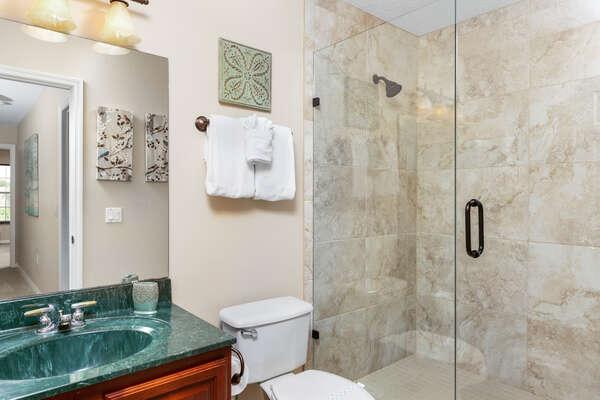 Elegant all glass walk-in shower