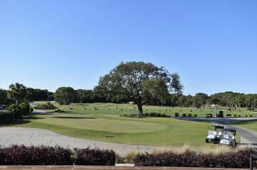 Seabrook is home to 2 championship golf courses And lessons are available. There is a Pro Shop on site .Crooked Oaks Was designed by Robert Trent Jones Sr.  Ocean Winds was designed by Willard Byrd.
