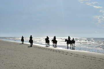 The Seabrook Island Equestrian Center offers horseback rides along the trails and along the beach. What a great way to start the morning!
