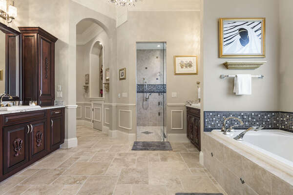 The first master bathroom with Kohler steam shower and large tub