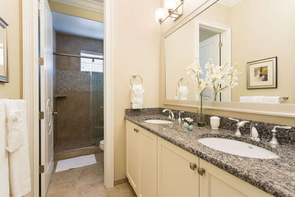 Granite countertops with dual sinks with walkin glass shower
