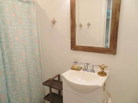 Bathroom on the 1st floor located off of the hall across from Bedroom 2 - 162 Owl Pond Brewster Cape Cod - New England Vacation Rentals