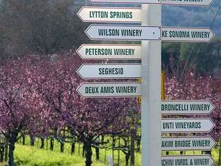 Art and Wine Estate is located in the heart of Sonoma Wine Country