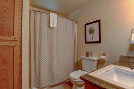 Downstairs Bathroom - Updated and elegant