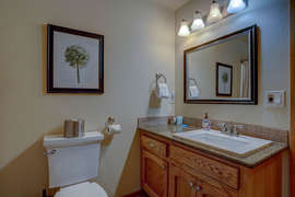Downstairs Bathroom - Updated and elegant