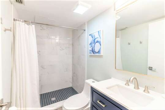 Renovated Master Ensuite with walk in shower