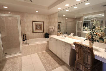 Magnificent master bathroom