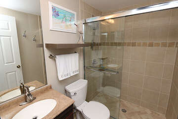 Renovated bathroom with walk in shower