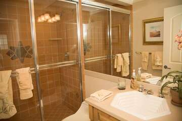 Guest bathroom with walk-in shower.
