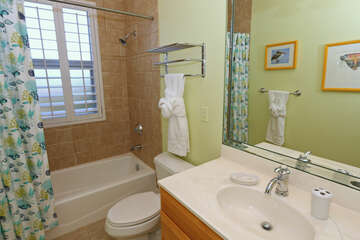 Guest bathroom 3 is nice and clean.