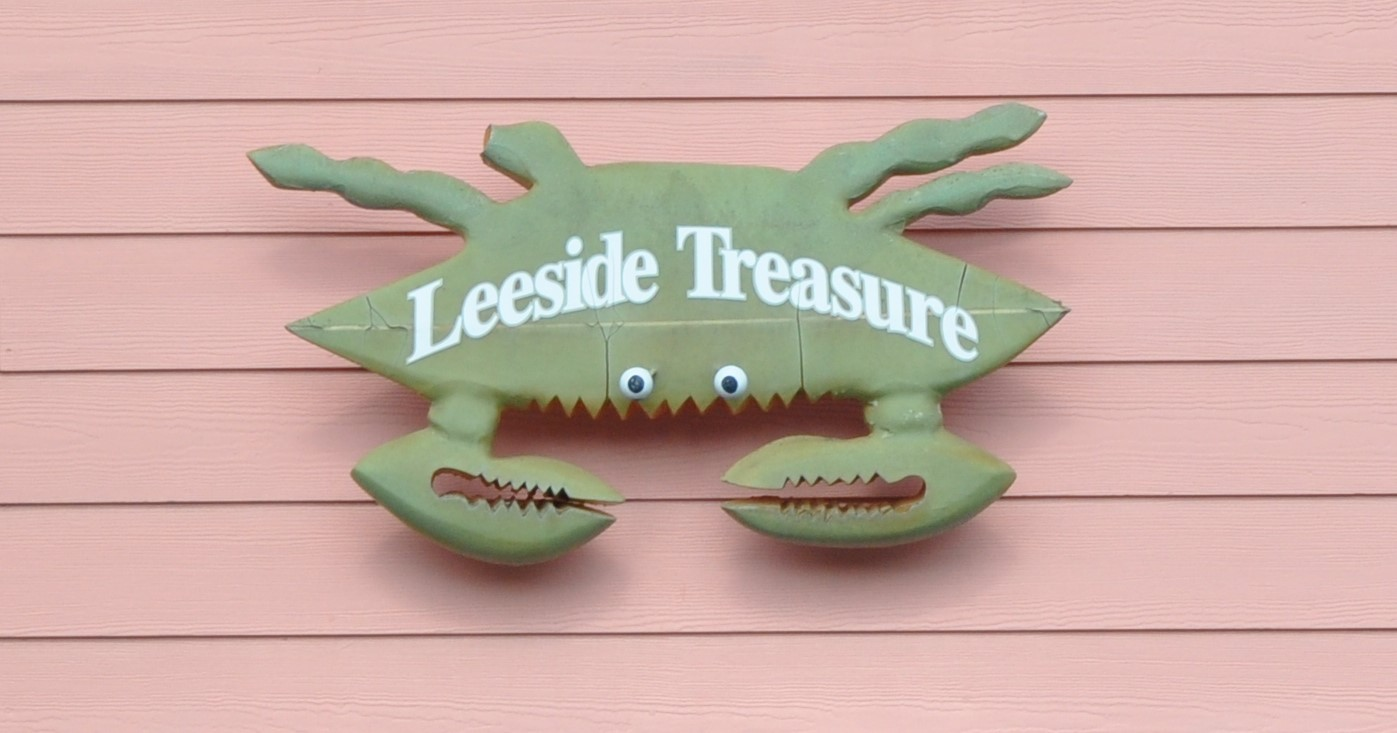 205LS - LEESIDE TREASURE | Photo