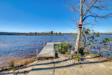 A tree and dock by the lake, located steps away from this rental.