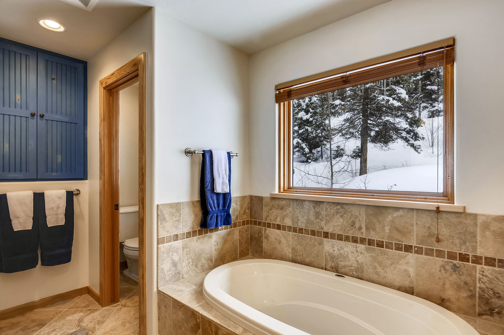 Master Bathroom - another view 1