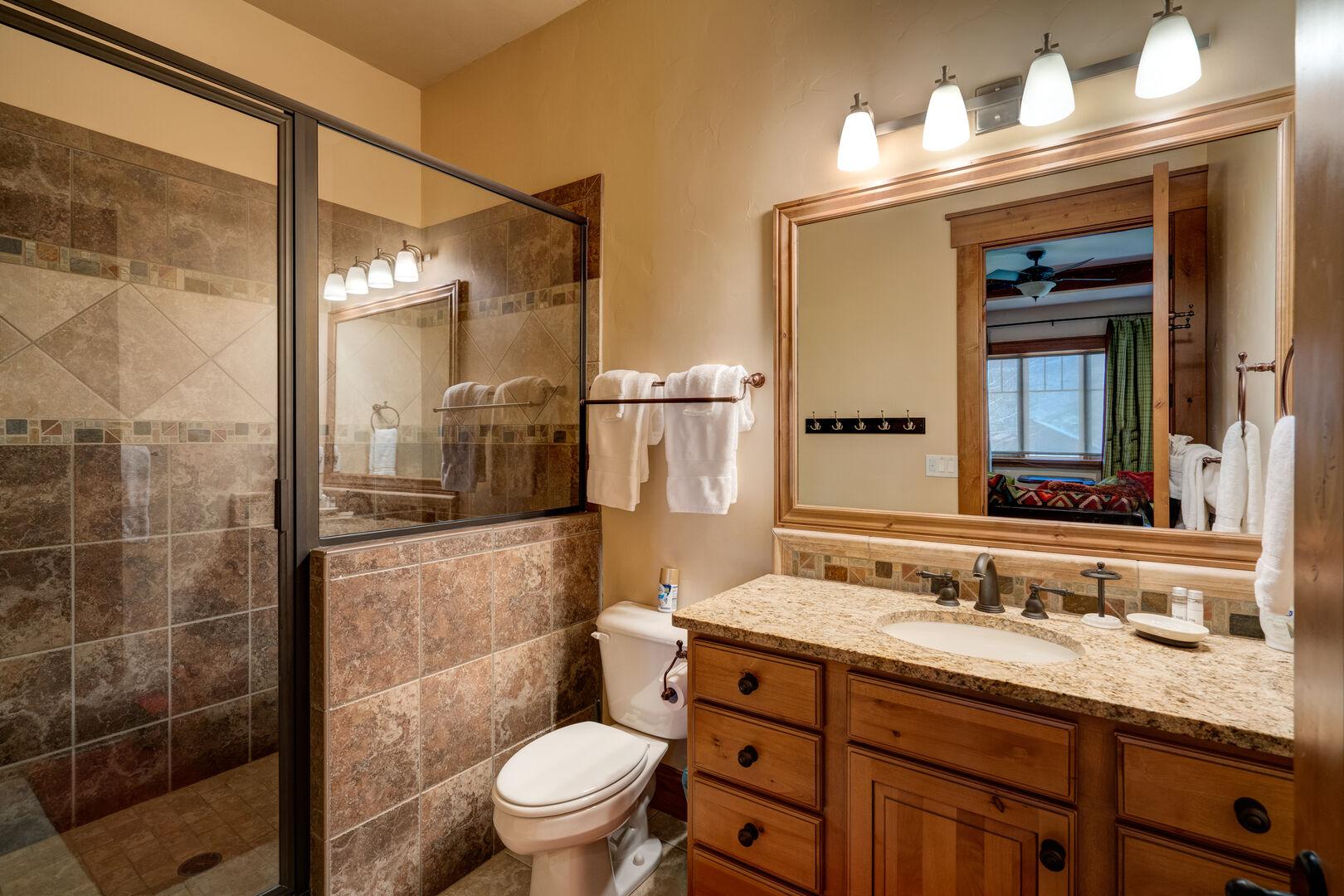 Lower level full bathroom in the TV room