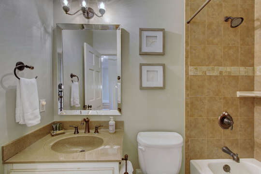Bathroom with vanity sink, toilet, and shower with brown tile walling.
