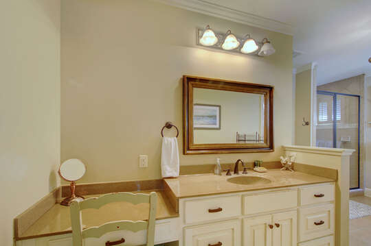 Master bathroom with vanity sink and built in make-up counter.